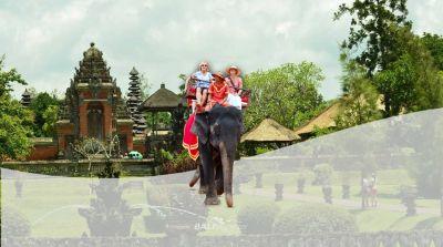 Elephant Ride and Ubud Tour