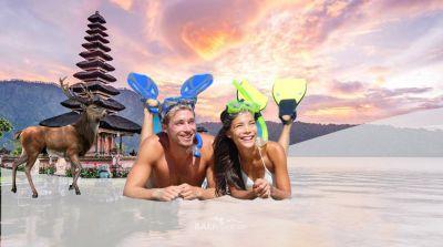 Snorkeling at Menjangan